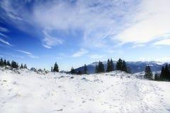 Voetafdrukken in sneeuw Stock Foto