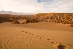 Voetafdrukken in Valle DE La Muerte in Atacama-Woestijn Stock Foto's