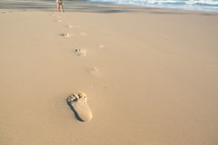 Voetafdrukken van een jong geitje in het zand Stock Foto