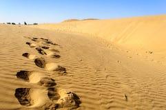 Voetafdrukken van kameel op Zandduinen, SAM-duinen van de Woestijn van Thar van I Stock Foto