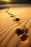 Voetafdrukken in zand 2 Royalty-vrije Stock Afbeeldingen
