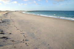 Voetafdrukken in zand royalty-vrije stock afbeeldingen