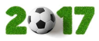 2017 - Voetbal en Gras Stock Afbeelding