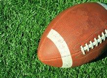 Voetbal in het Gras Stock Foto's