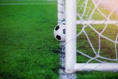 Voetbal op doellijn stock fotografie