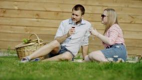 Voetbal op een picknick stock video
