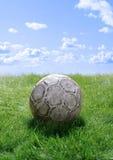 Voetbal op gazon Royalty-vrije Stock Afbeeldingen
