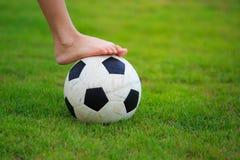 Voetbal op gebied van groen gras Stock Foto