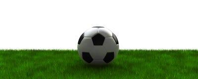 Voetbal op gras Royalty-vrije Stock Foto's