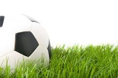 Voetbal op gras. Royalty-vrije Stock Afbeelding