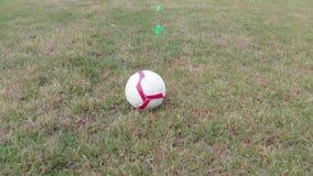 Voetbal op het gras in het park stock videobeelden