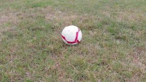 Voetbal op het gras in het park stock footage