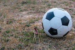 Voetbal op zandgrond stock fotografie