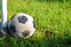 Voetbal in Tuin Stock Fotografie
