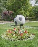 Voetbalbal in het Park van de zomergorky Royalty-vrije Stock Afbeeldingen