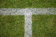 Voetbalgebied met witte lijnen op gras Royalty-vrije Stock Afbeelding
