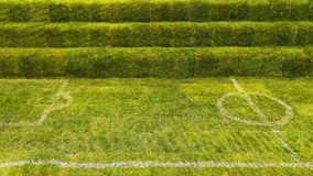 Voetbalgras Royalty-vrije Stock Fotografie