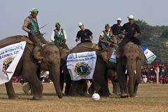 Voetbalspel - Olifantsfestival, Chitwan 2013, Nepal Royalty-vrije Stock Foto's