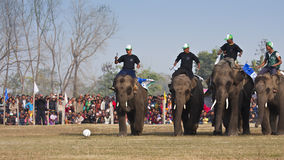 Voetbalspel - Olifantsfestival, Chitwan 2013, Nepal Royalty-vrije Stock Fotografie