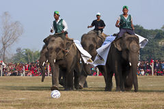 Voetbalspel - Olifantsfestival, Chitwan 2013, Nepal Stock Afbeelding