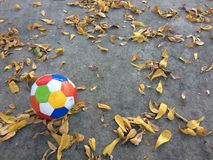 Voetbalsport Stock Afbeeldingen