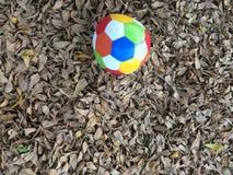 Voetbalsport Stock Afbeelding