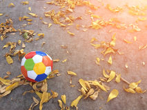 Voetbalsport Royalty-vrije Stock Fotografie