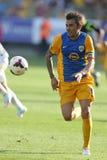 Voetbalster - Adrian Mutu Royalty-vrije Stock Foto's