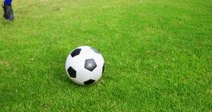 Voetbalster die een bal op het gebied schoppen stock footage