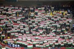 Voetbalventilators met vlaggen stock foto's