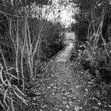 Voetbrug bij Fairfield-Meren royalty-vrije stock foto