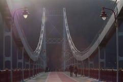 Voetbrug in Kiev Royalty-vrije Stock Foto's