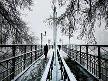 Voetbrug op sneeuwdag Stock Foto