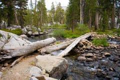 Voetbrug over rivier op John Muir Trail stock foto