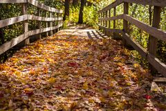 VoetdieBrug in het Midwesten in gevallen de herfstbladeren wordt behandeld royalty-vrije stock fotografie
