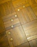 Voetdruk van kat op de vloer Royalty-vrije Stock Afbeelding