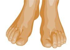 voeten Royalty-vrije Stock Foto