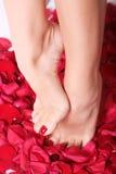 Voeten en roze-bloemblaadjes Royalty-vrije Stock Fotografie