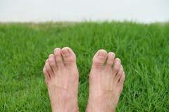 Voeten op green Stock Fotografie
