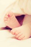 Voeten pasgeboren babyslaap Stock Foto's