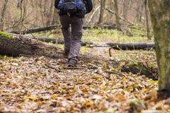 Voeten in schoenen op een bosweg Stock Foto