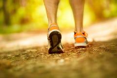 Voeten van de atleten de lopende sport op bos, gezonde levensstijlfitness royalty-vrije stock fotografie