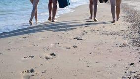 Voeten van vier actieve jongeren die langs de kust lopen stock videobeelden