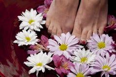 Voeten in water met bloemen Stock Foto