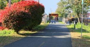 Voetgang in Northampton, Massachusetts stock foto