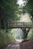 Voetgangersbrug in het Engelse platteland Stock Afbeelding