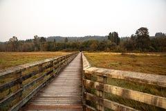 Voetgangersbrug in moerasland in vreedzaam noordwesten stock fotografie