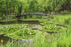 Voetgangersbrug over een vijver in stadspark Royalty-vrije Stock Fotografie