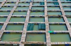 Voetgangersbruggen bij het landbouwbedrijf van het vissenfokken stock fotografie