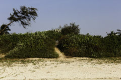 Voetpad aan de poort op paradijsstrand stock afbeelding